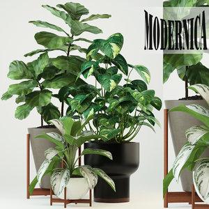 3D model plants 74 modernica pots