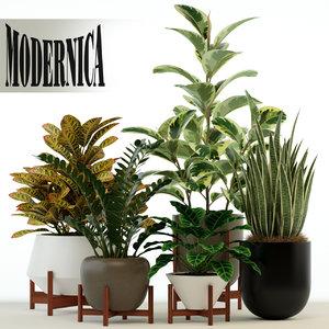 3D plants 75 modernica pots model