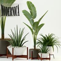3D plants 76 modernica pots