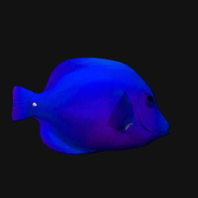3D cheek butterfly fish