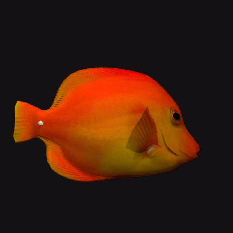 3D gold cheek butterfly fish