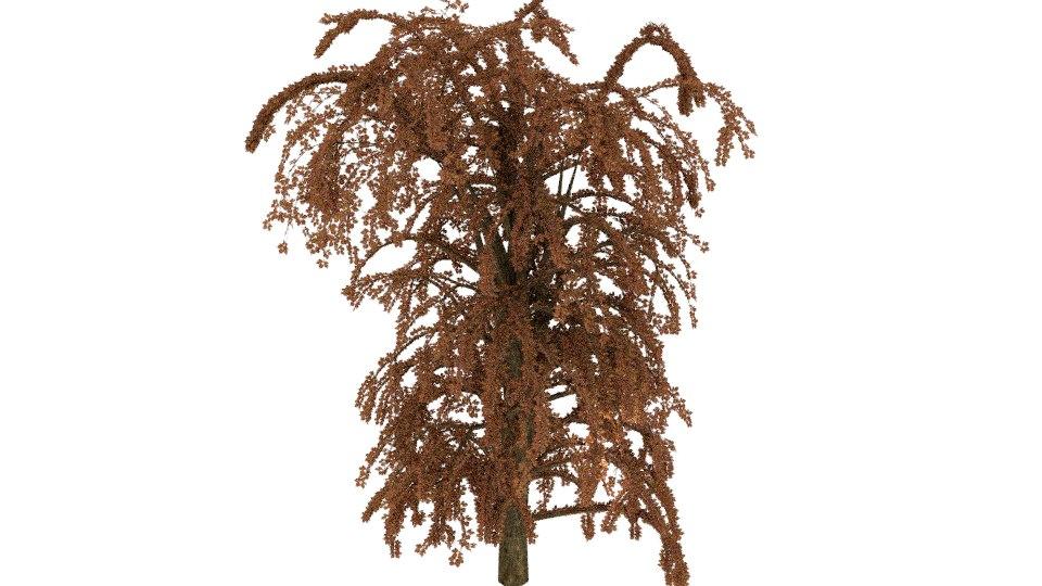 willow tree 3D