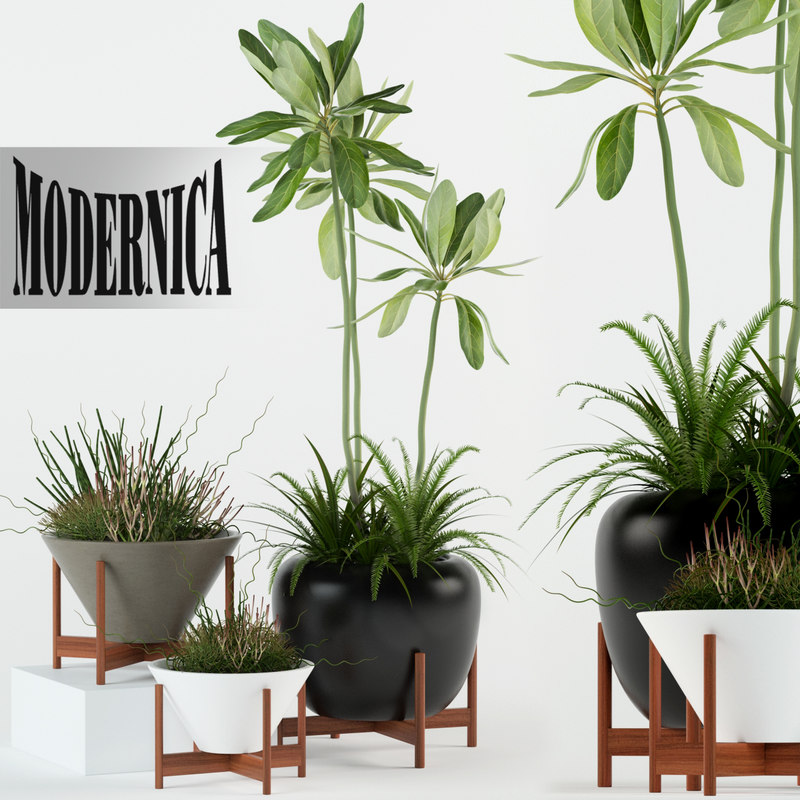 3D model plants 77 modernica pots