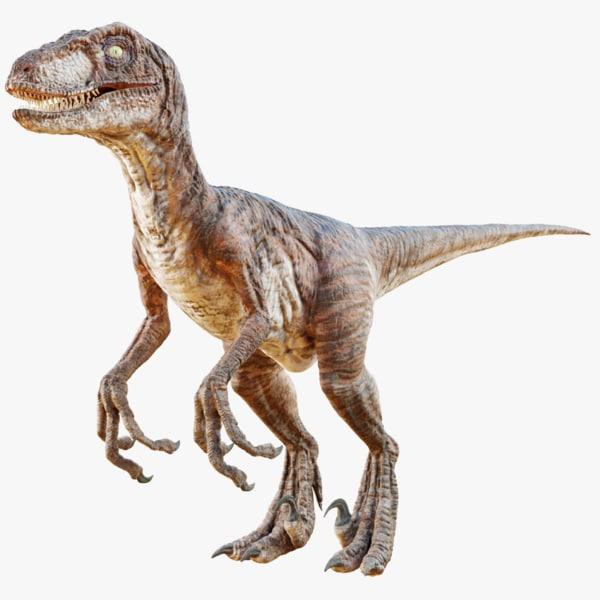 realistic raptor 3D model