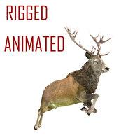 deer animation model