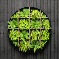 fern wall panel model