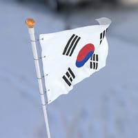 3D south flag