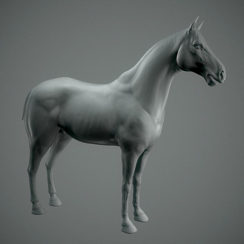 3D base horse retopo model