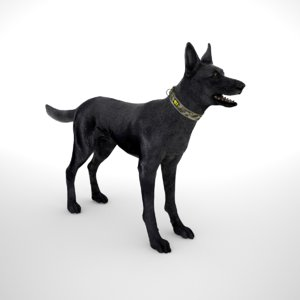 belgian malinois multicam id 3D model