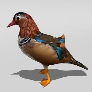 mandarin duck 3D