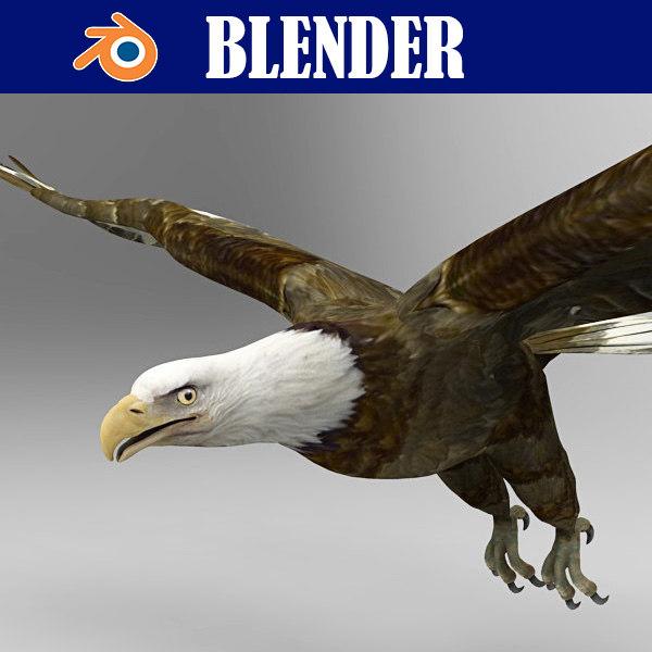 eagle bird animal model
