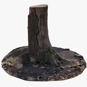 oak stump 11 3D model