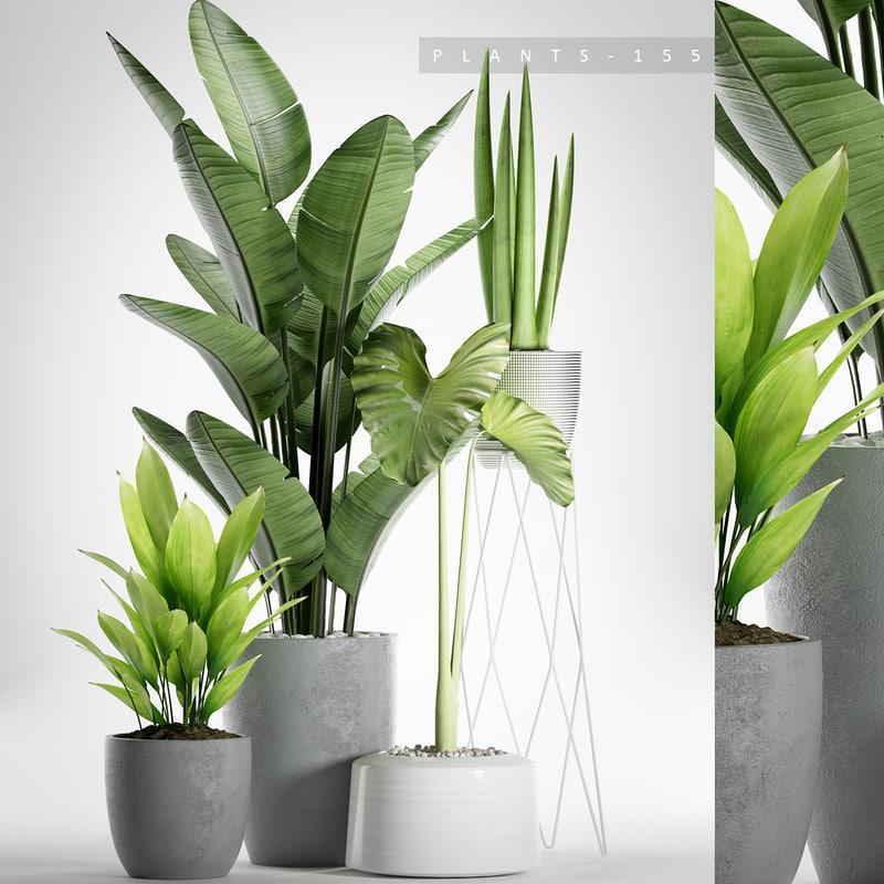 3D planters plants model