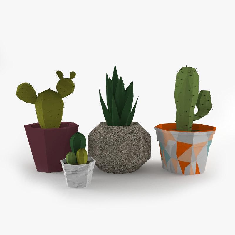 cactus model