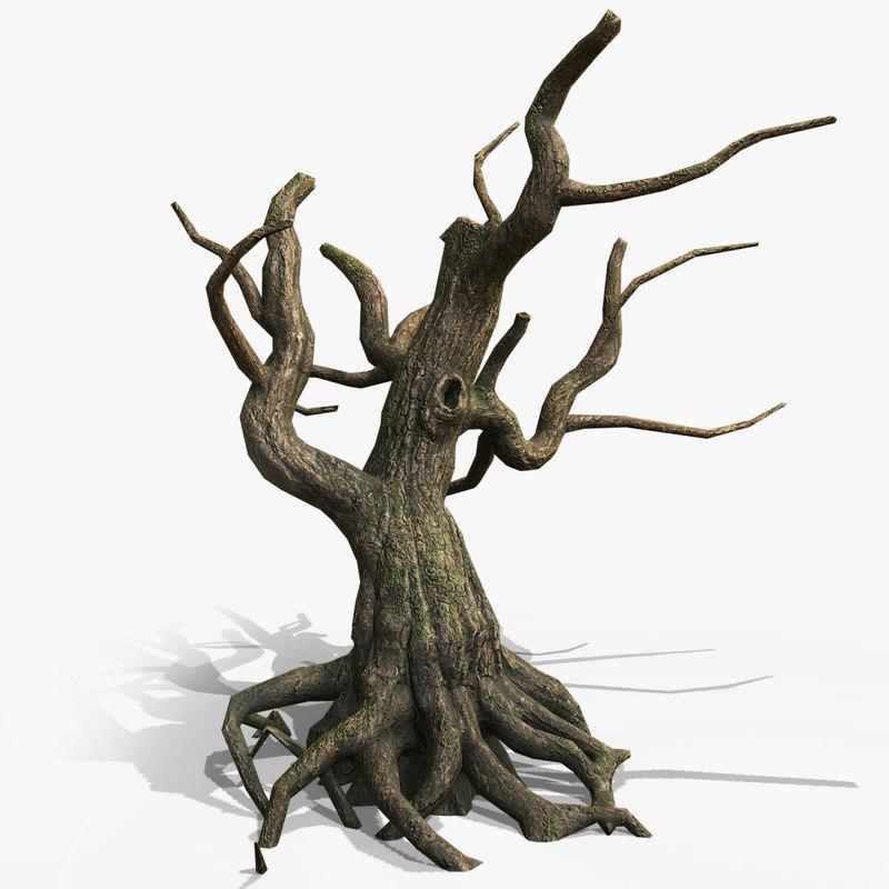 3D dead tree roots