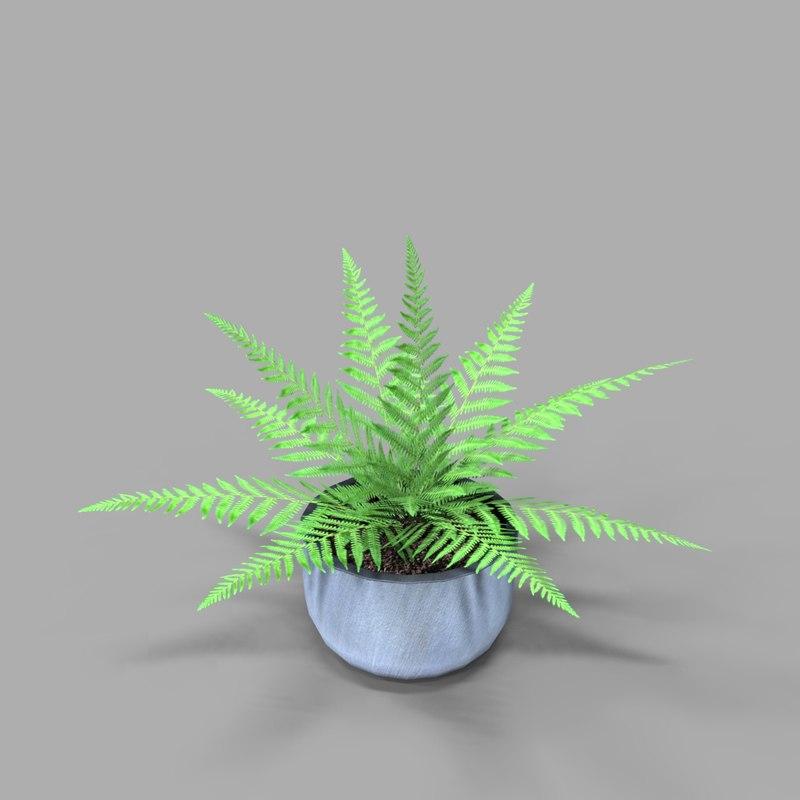 plant 4 3D model