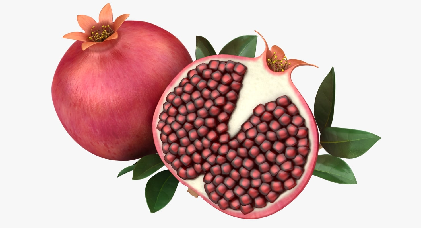 3D realistic pomegranate model