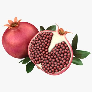 3D realistic pomegranate model