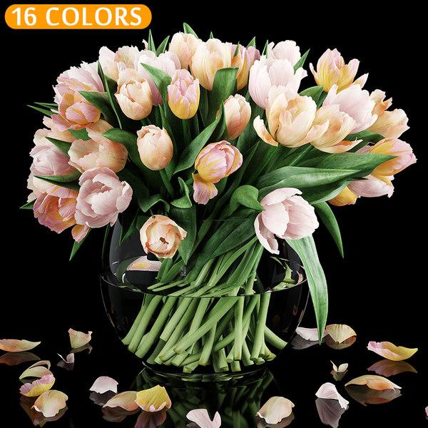 tulip colors 3D model