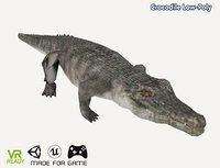optimized crocodile 3D