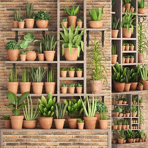 plants clay pots 3D model