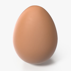 3D brown chicken egg model