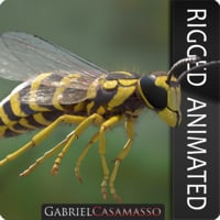 Vespula squamosa Rigged