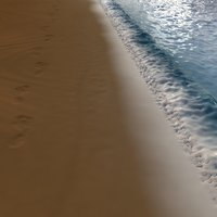 3D model beach footprint foot