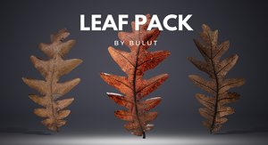 leaf leaves 3D model
