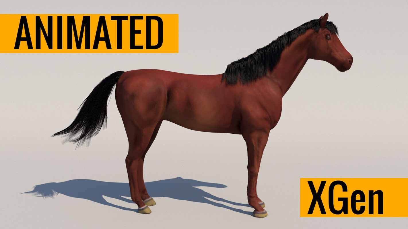 horse animations 3D model