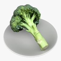 broccoli vegetable food 3D