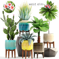 3D model plants pots west