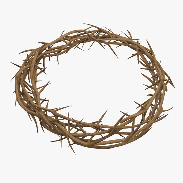 crown thorns 3D model
