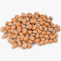 corn kernels model