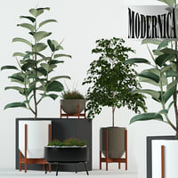 Plants collection 78 Modernica pots