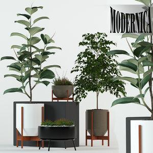 plants 78 modernica pots 3D model