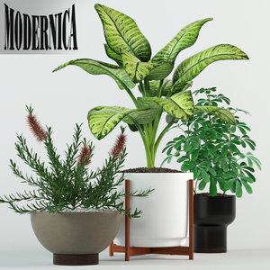 plants 79 modernica pots 3D model