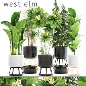 pots west elm model
