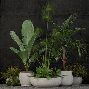 plants 80 model