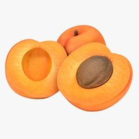 realistic apricot 3D