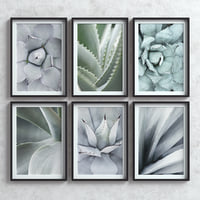 Picture Frames Set -7