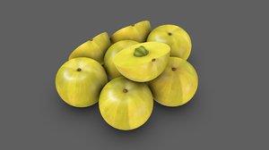 amla edible fruit model