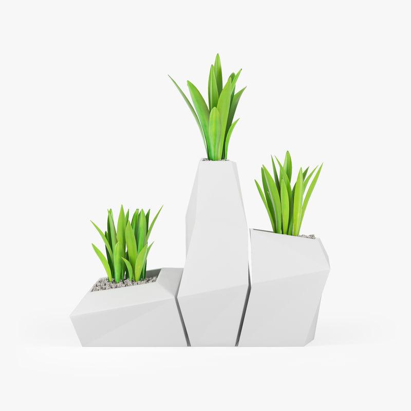 3D plant model