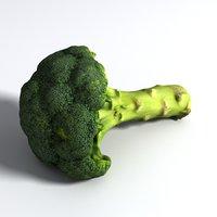 3D model broccoli