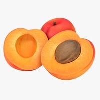 realistic apricot color 2 3D model