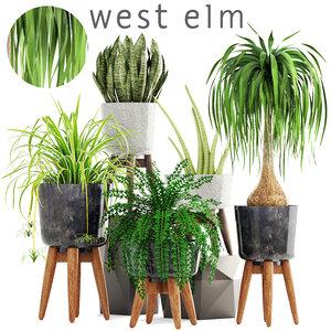 3D model plants pots west