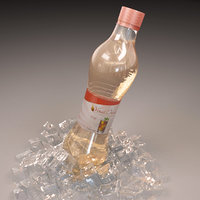 bottle ice 3D model