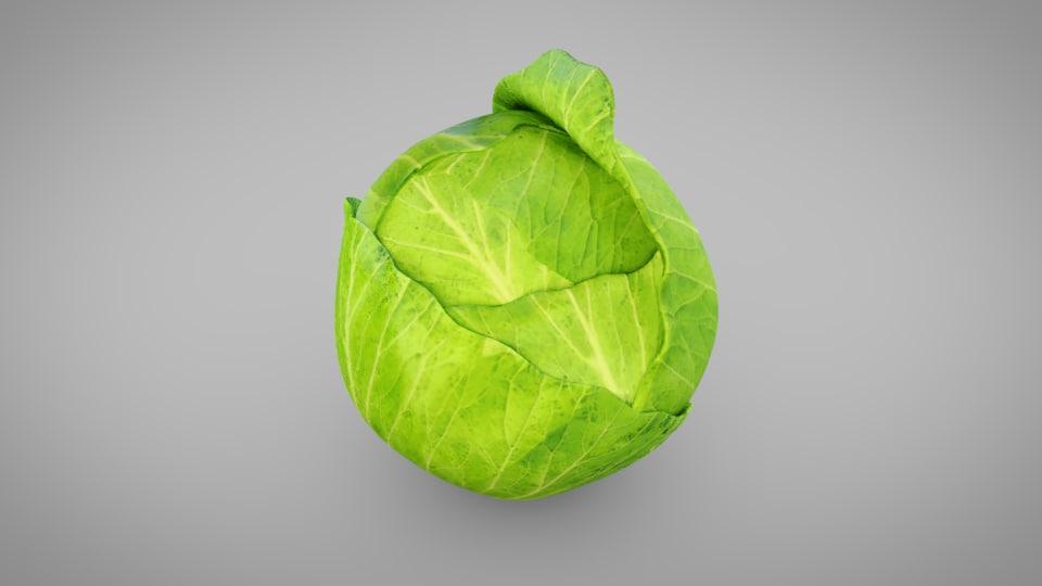 3D model vegetables