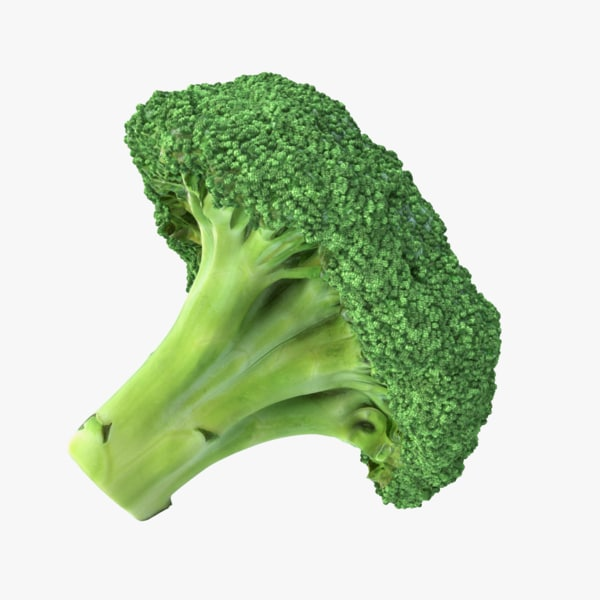 3D broccoli pbr model