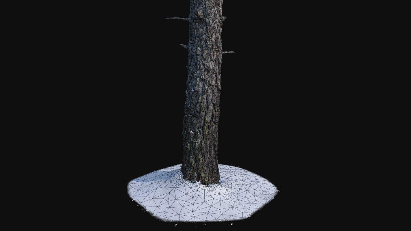 trunk scanned 3D model
